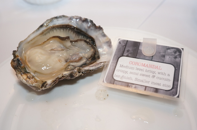 GW-Coromandel-Bay